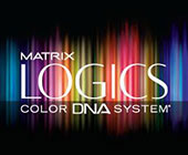 Matrix-Logics
